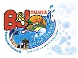 B&J main logo