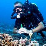 BD rebreather