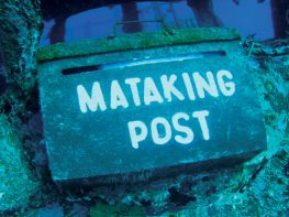 mataking post