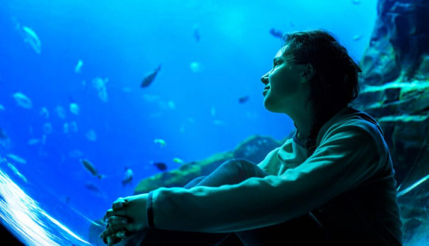 being a scuba diving woman looking out aquarium