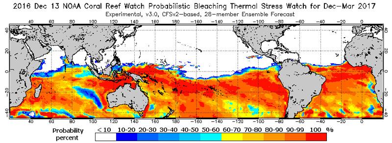 NOAA coral bleaching monitor