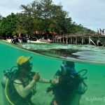 try scuba discover diving