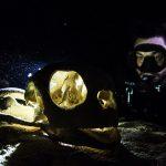 seaventures turtle tomb