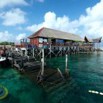 borneo divers main jetty