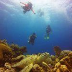 nd underwater
