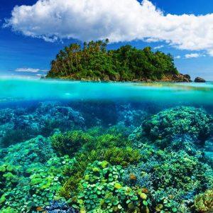 Sabah Malaysia Overunder