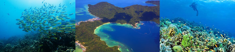 Tunku Abdul Rahman Marine Park Kota Kinabalu Sabah
