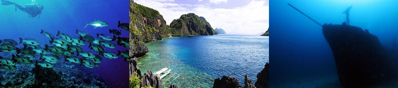 Dive Coron Palawan Philippines